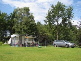Vakantie camping de Paal 2009 550